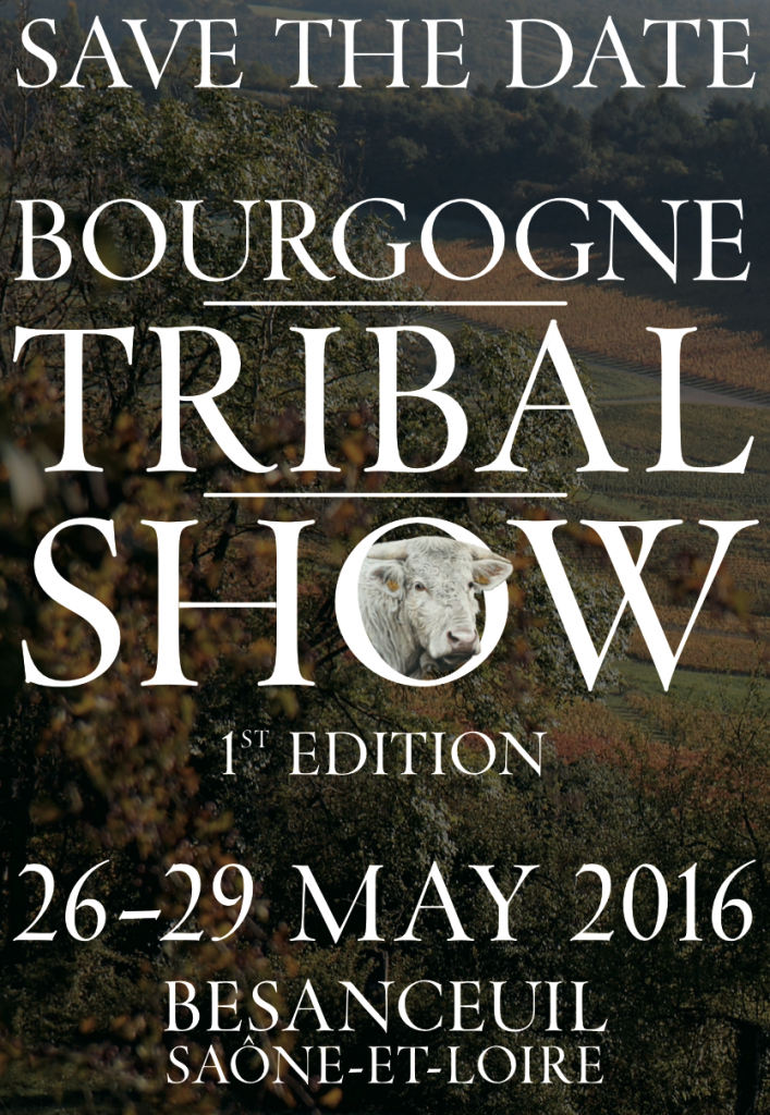 Bourgogne Tribal Art Show Delvoyeurs